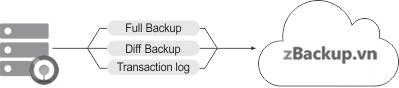 Hỗ trợ sao lưu Full, Differential, Transaction Log